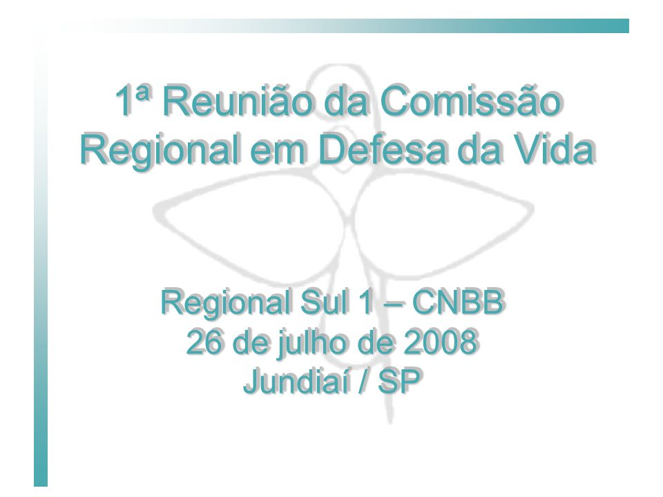1ª Reunião da Comissão Regional em Defesa da Vida