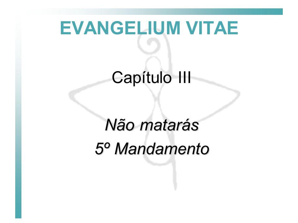 EVANGELIUM VITAE Capítulo III Não matarás 5º Mandamento