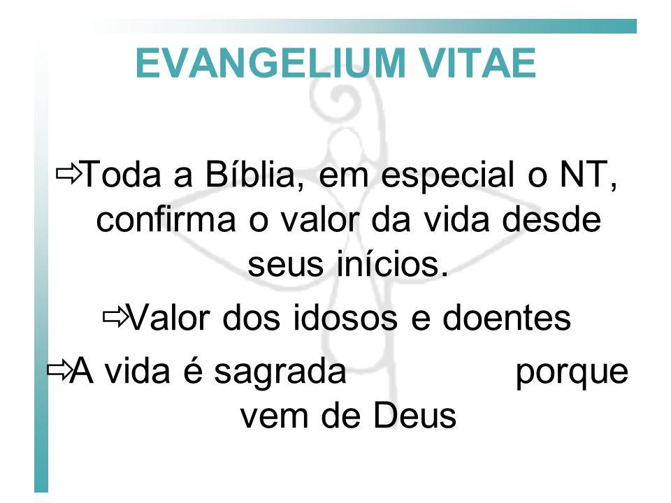 EVANGELIUM VITAE Toda a Bíblia, em especial o NT, confirma o valor da vida desde seus inícios. Valor dos idosos e doentes.