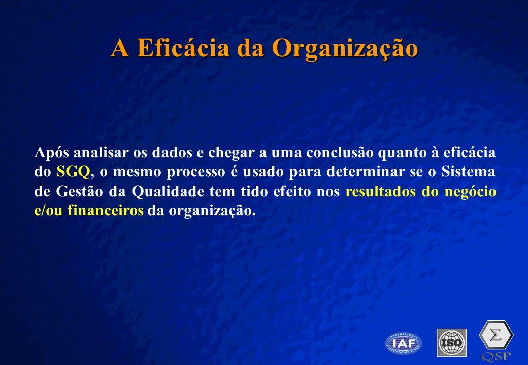 A Eficácia da Organização
