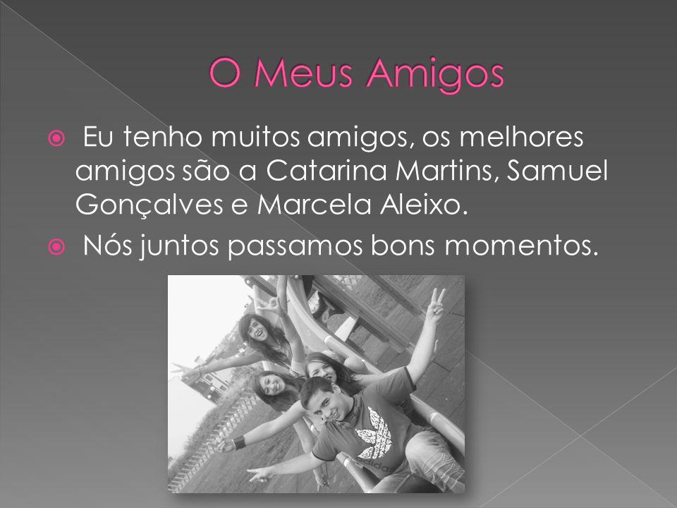 O Meus Amigos Eu tenho muitos amigos, os melhores amigos são a Catarina Martins, Samuel Gonçalves e Marcela Aleixo.
