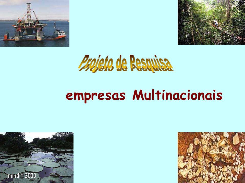 empresas Multinacionais