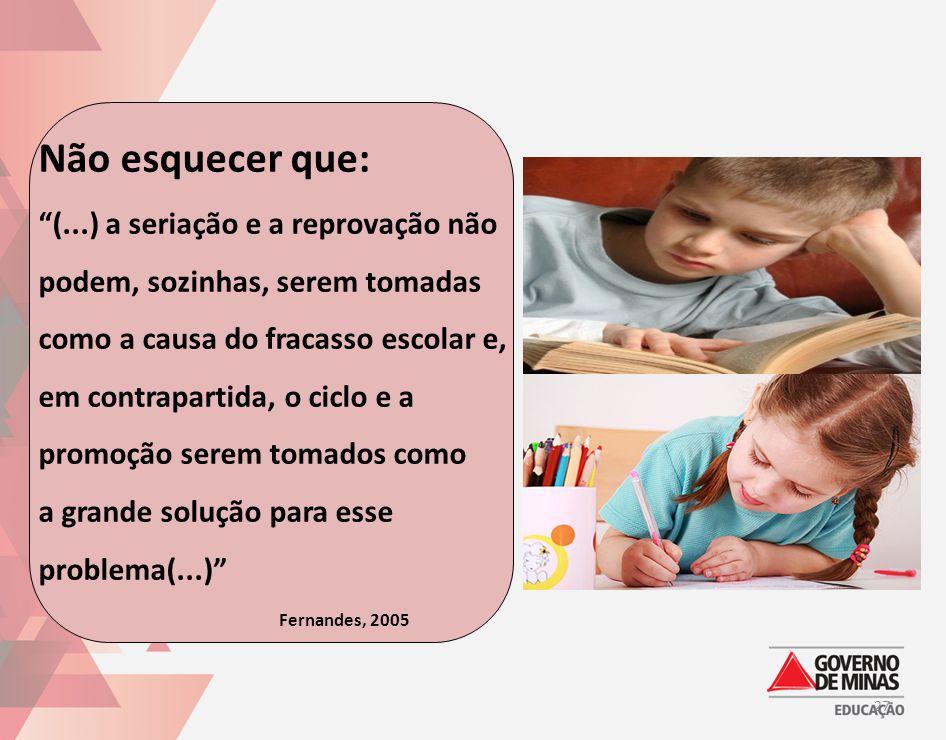 Não esquecer que: (...) a seriação e a reprovação não podem, sozinhas, serem tomadas como a causa do fracasso escolar e, em contrapartida, o ciclo e a promoção serem tomados como a grande solução para esse problema(...) Fernandes, 2005