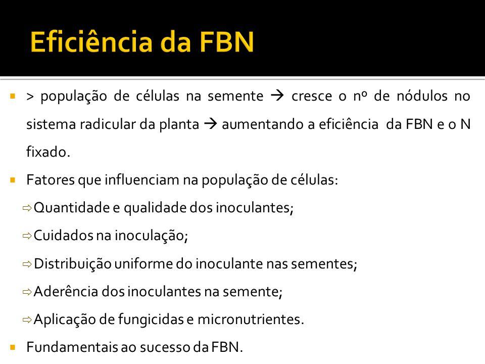 Eficiência da FBN