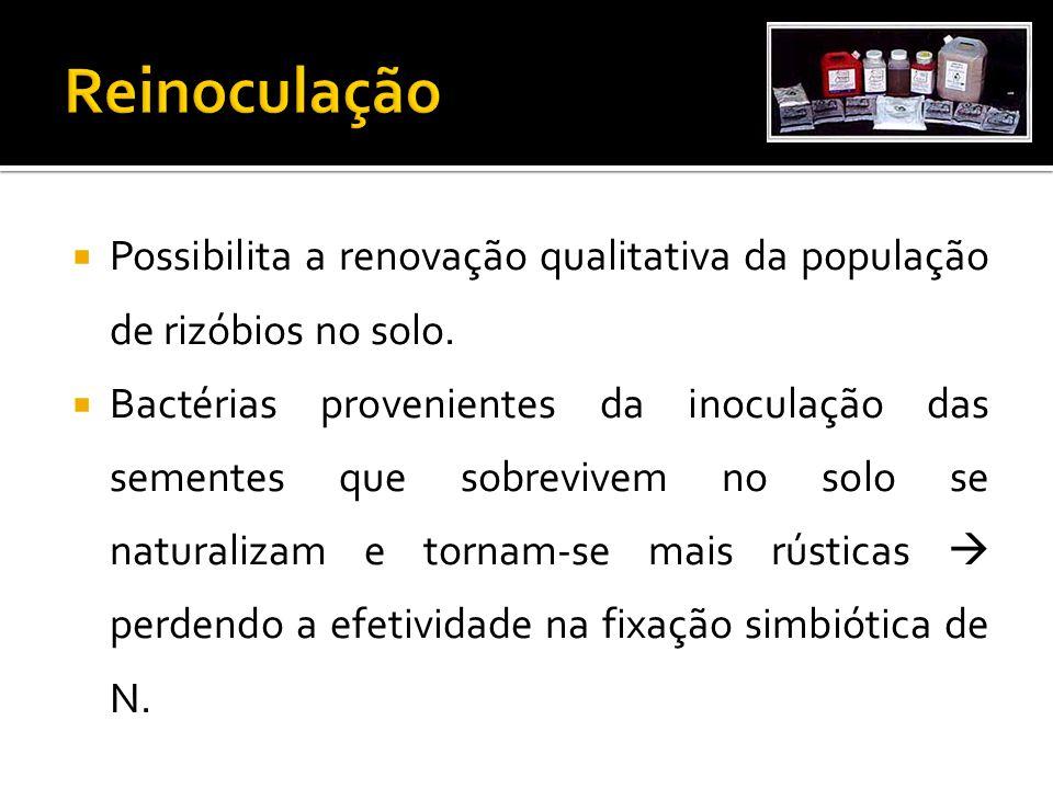 Reinoculação Possibilita a renovação qualitativa da população de rizóbios no solo.