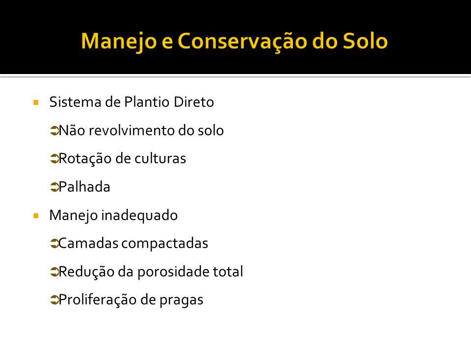 Manejo e Conservação do Solo