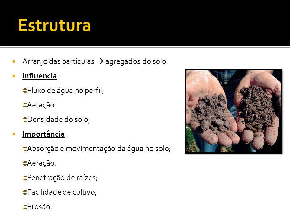 Estrutura Arranjo das partículas  agregados do solo. Influencia :