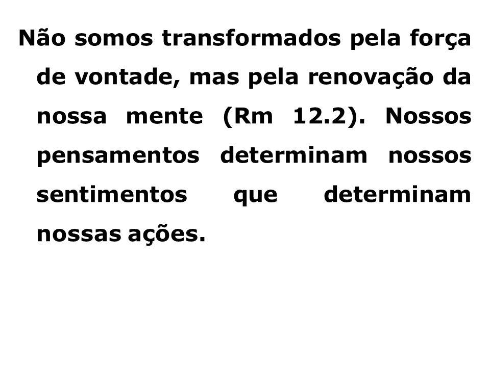 Não somos transformados pela força de vontade, mas pela renovação da nossa mente (Rm 12.2).