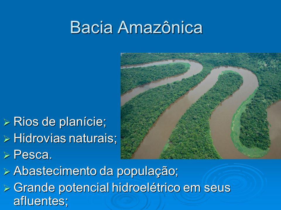 Bacia Amazônica Rios de planície; Hidrovias naturais; Pesca.