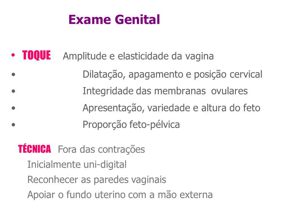 Exame Genital TOQUE Amplitude e elasticidade da vagina