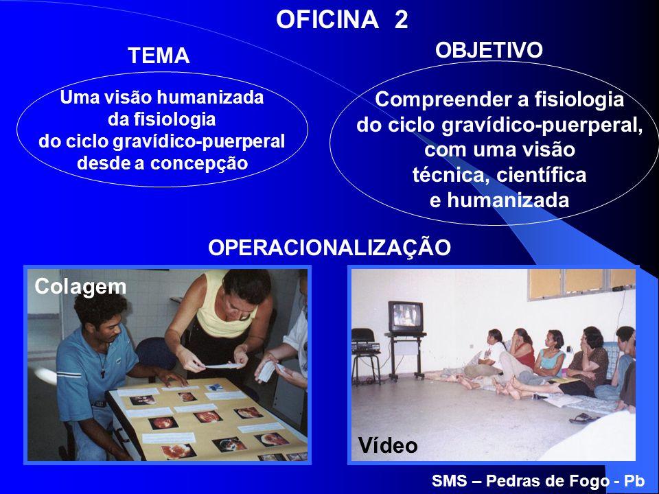 OFICINA 2 OBJETIVO TEMA OPERACIONALIZAÇÃO Colagem Vídeo