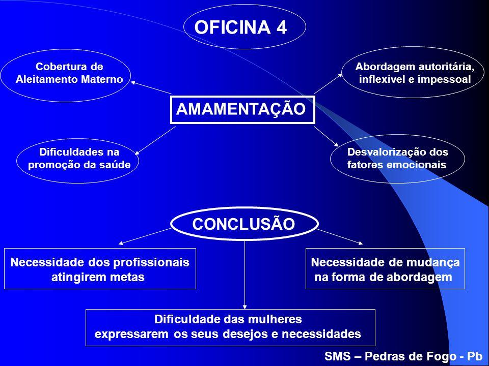 OFICINA 4 AMAMENTAÇÃO CONCLUSÃO