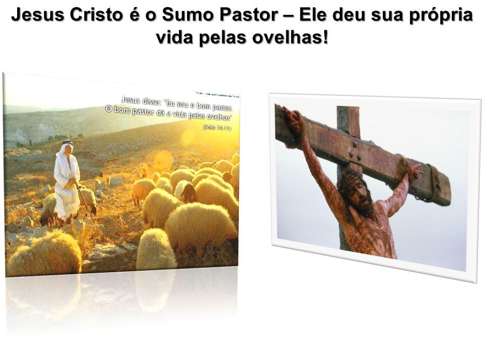 Jesus Cristo é o Sumo Pastor – Ele deu sua própria vida pelas ovelhas!