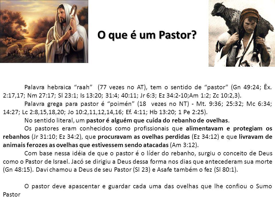 O que é um Pastor