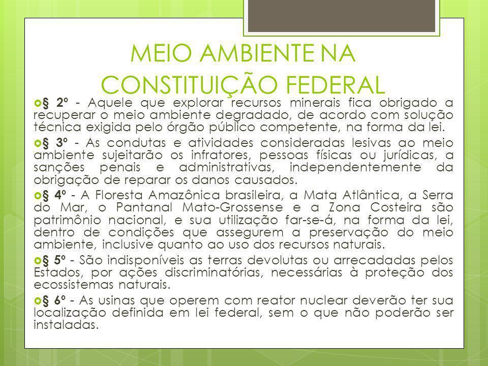 MEIO AMBIENTE NA CONSTITUIÇÃO FEDERAL