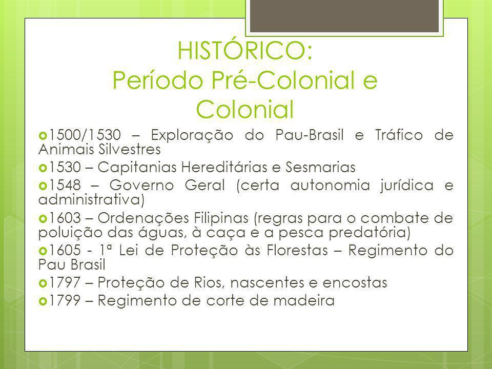 HISTÓRICO: Período Pré-Colonial e Colonial