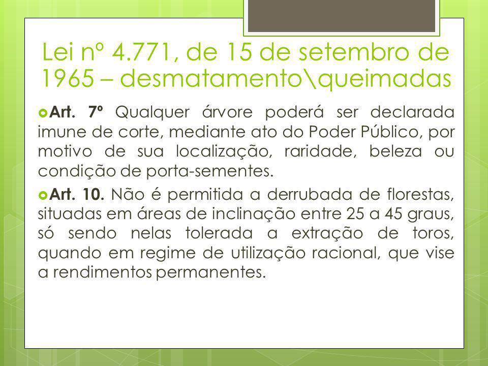 Lei nº 4.771, de 15 de setembro de 1965 – desmatamento\queimadas