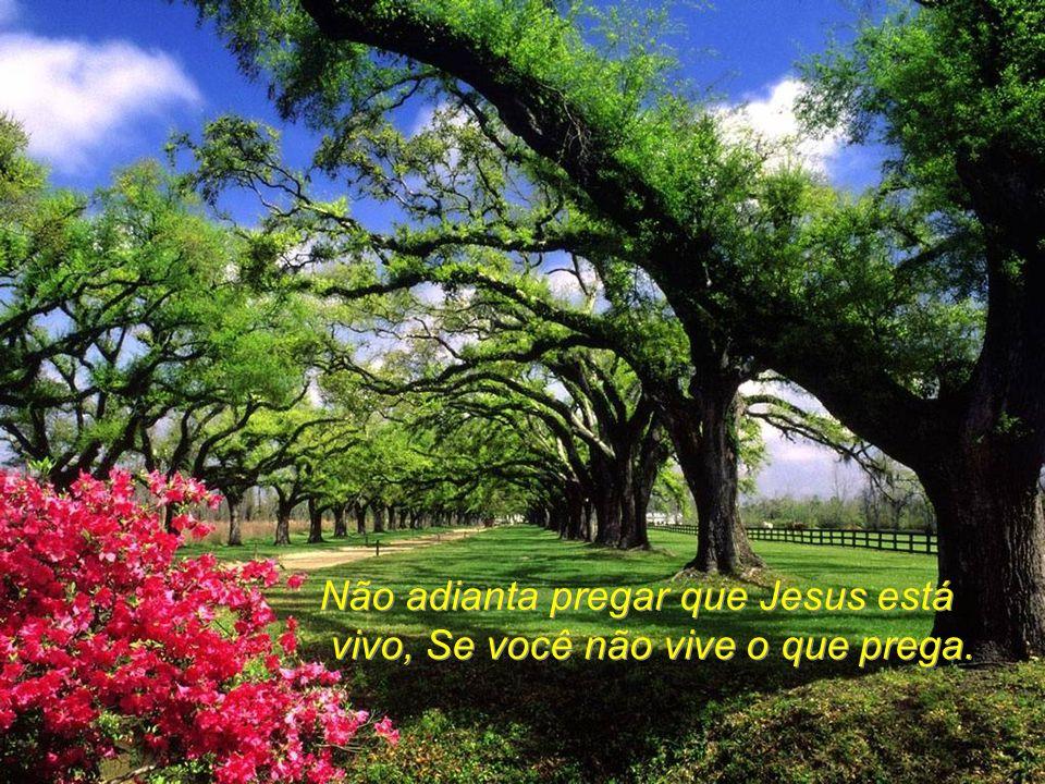 Não adianta pregar que Jesus está