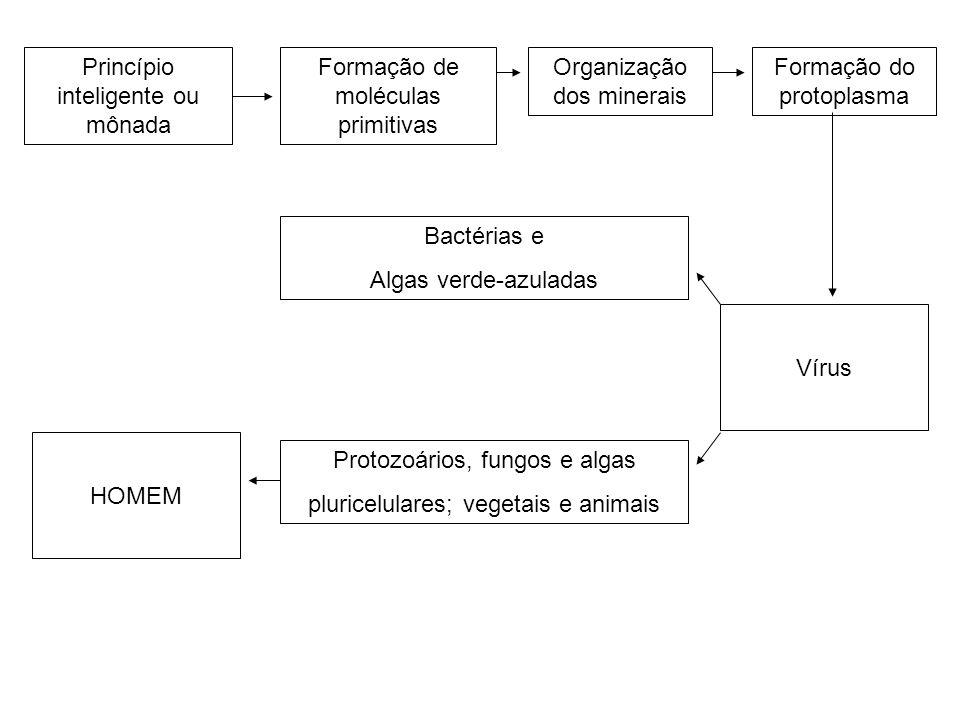 Princípio inteligente ou mônada Formação de moléculas primitivas