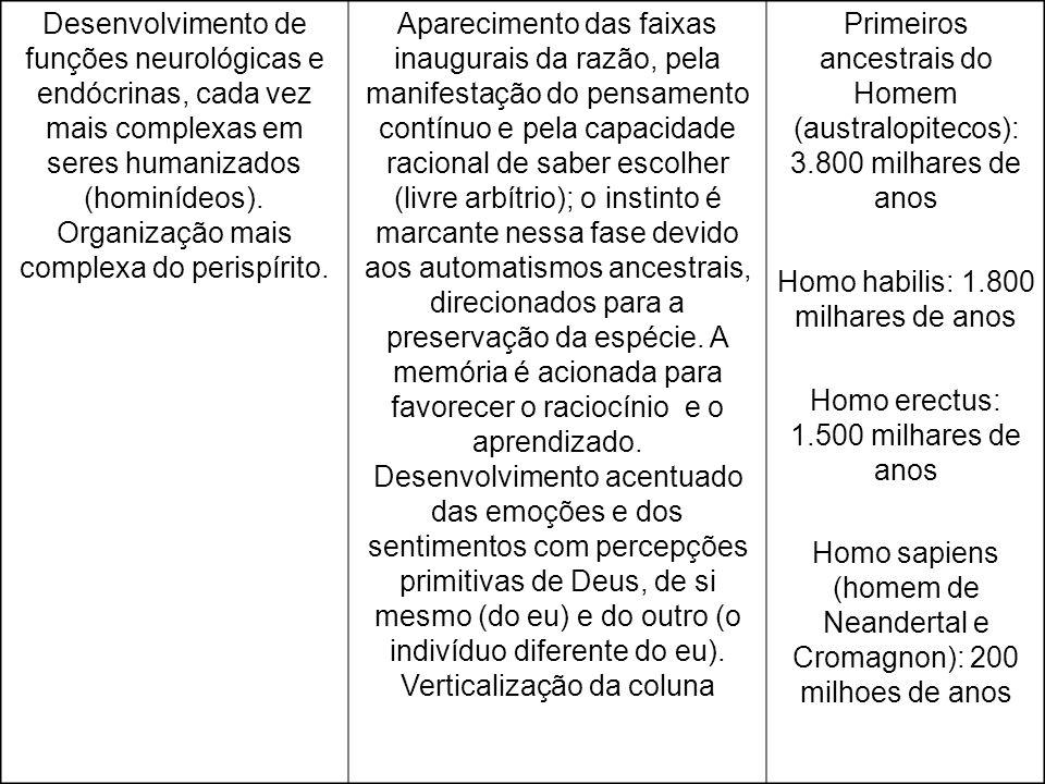 Homo habilis: 1.800 milhares de anos