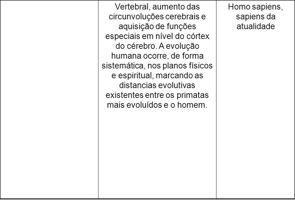 Homo sapiens, sapiens da atualidade