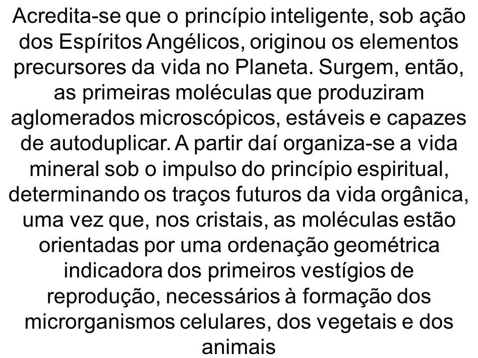 Acredita-se que o princípio inteligente, sob ação dos Espíritos Angélicos, originou os elementos precursores da vida no Planeta.