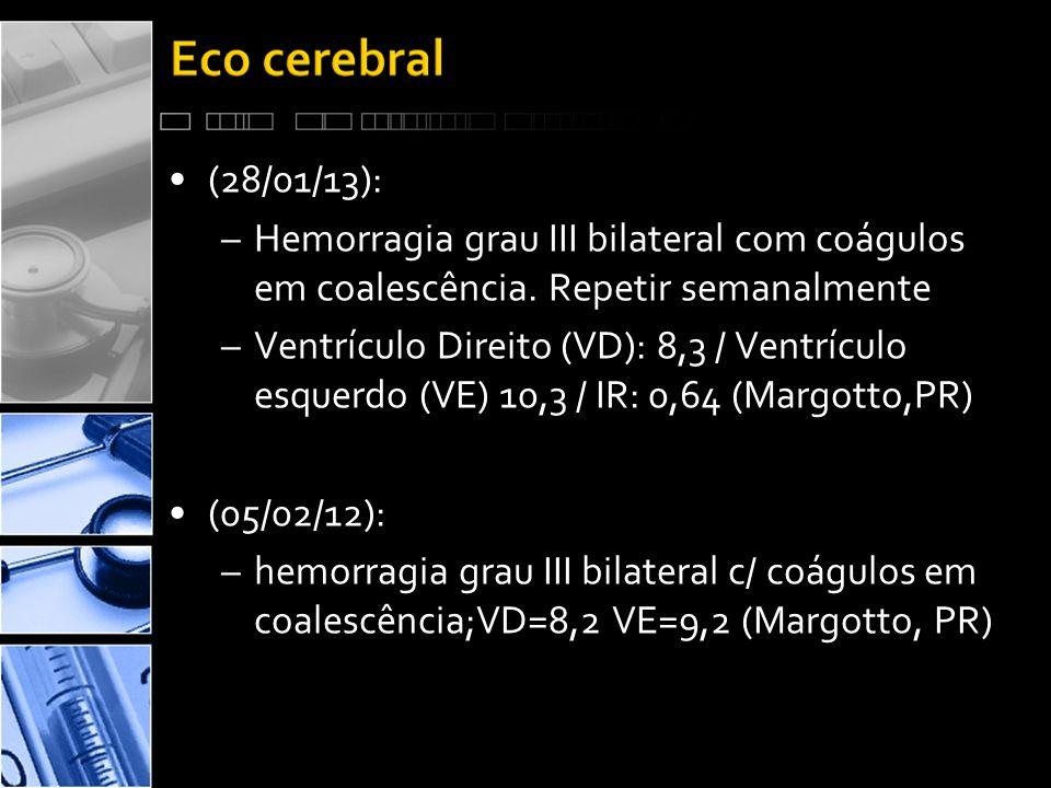 (28/01/13): Hemorragia grau III bilateral com coágulos em coalescência. Repetir semanalmente.