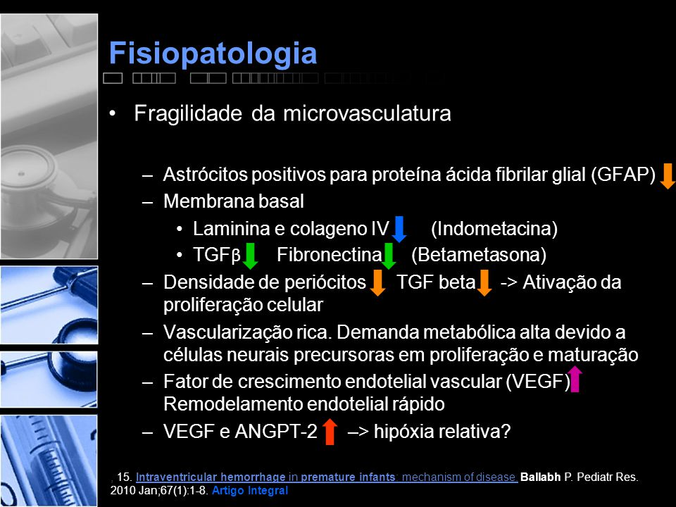 Fisiopatologia Fragilidade da microvasculatura