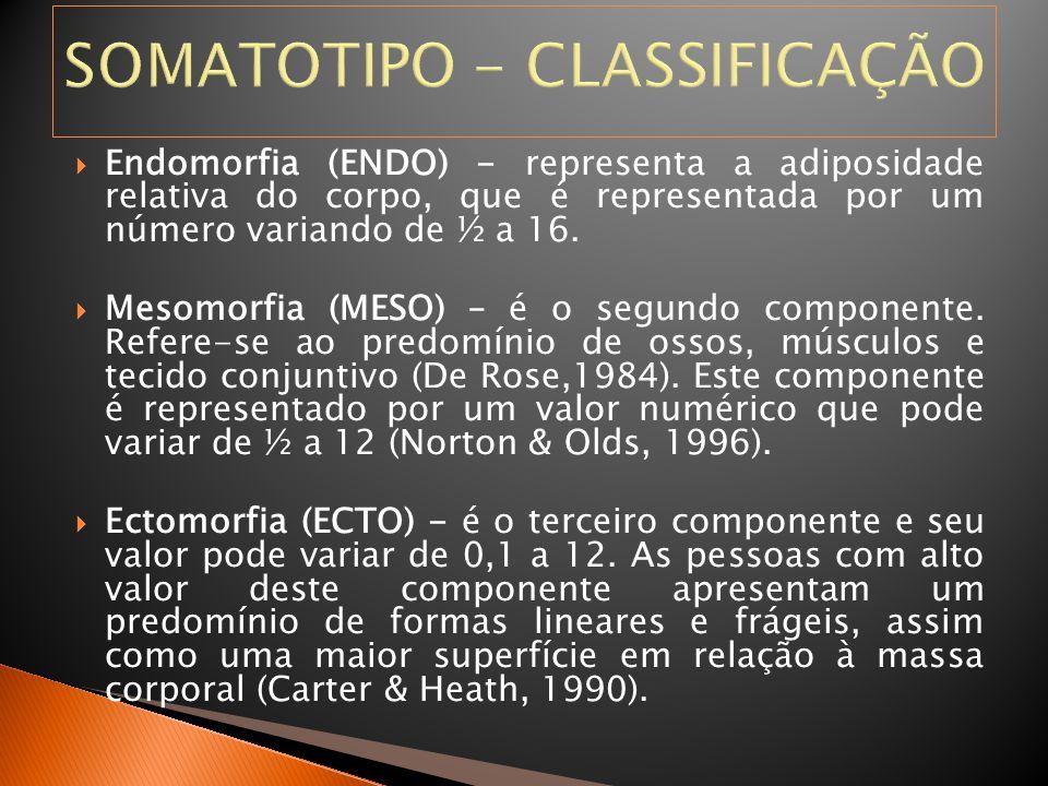 SOMATOTIPO - CLASSIFICAÇÃO