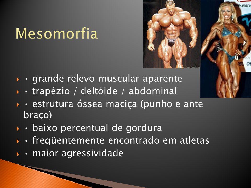 Mesomorfia • grande relevo muscular aparente