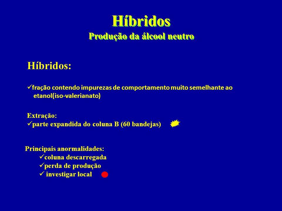 Híbridos Produção da álcool neutro