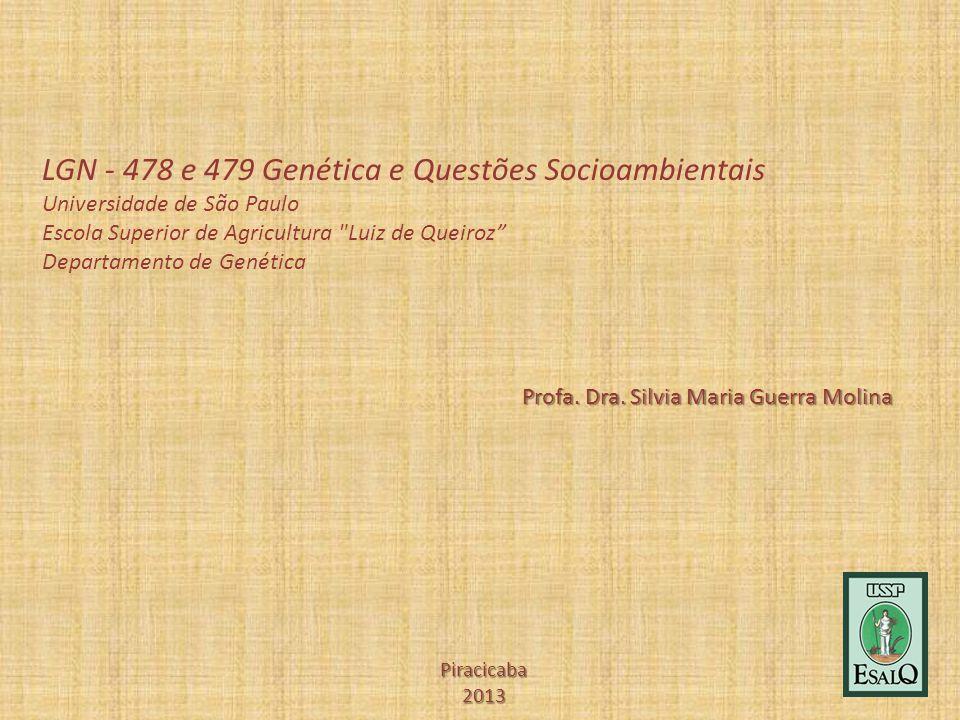 Profa. Dra. Silvia Maria Guerra Molina