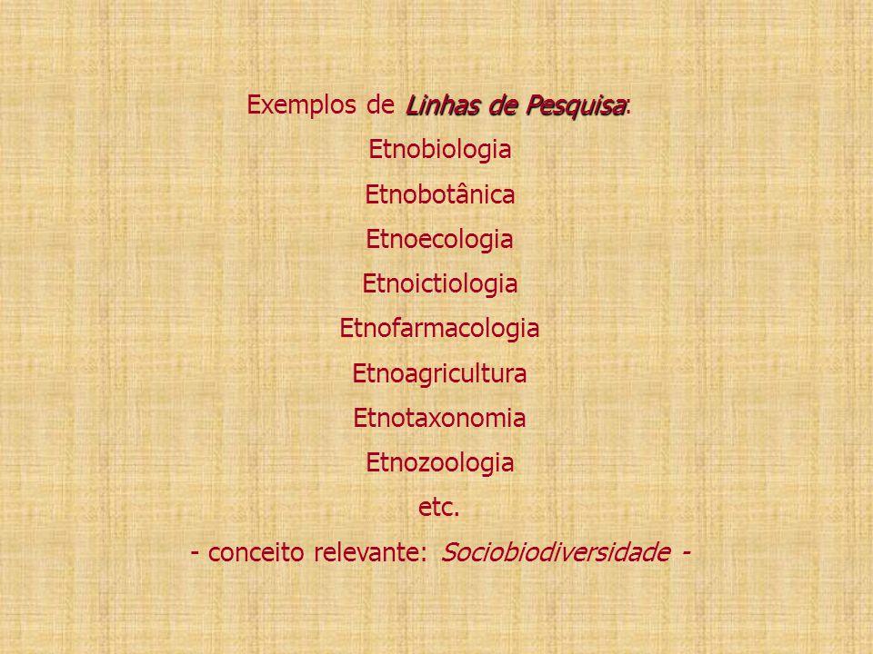 Exemplos de Linhas de Pesquisa: Etnobiologia Etnobotânica Etnoecologia Etnoictiologia Etnofarmacologia Etnoagricultura Etnotaxonomia Etnozoologia etc.