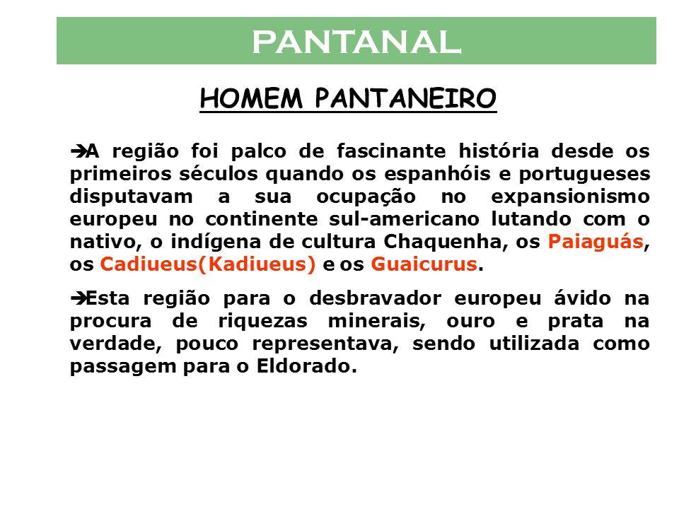 PANTANAL HOMEM PANTANEIRO