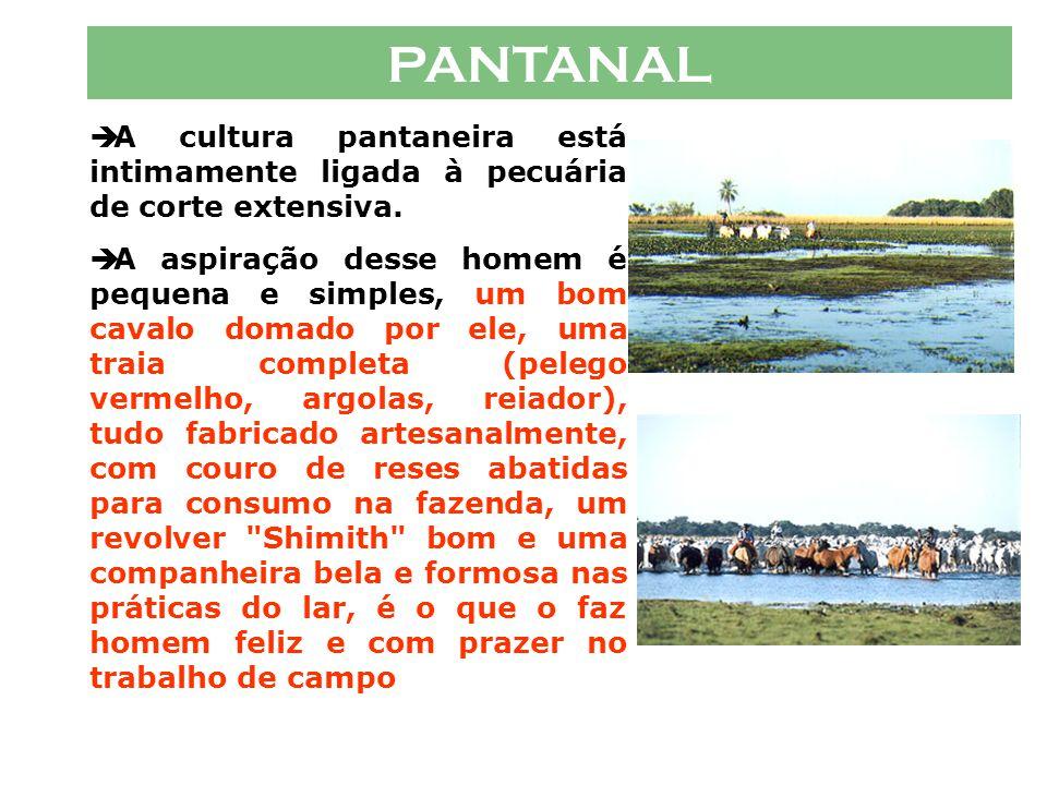 PANTANAL A cultura pantaneira está intimamente ligada à pecuária de corte extensiva.