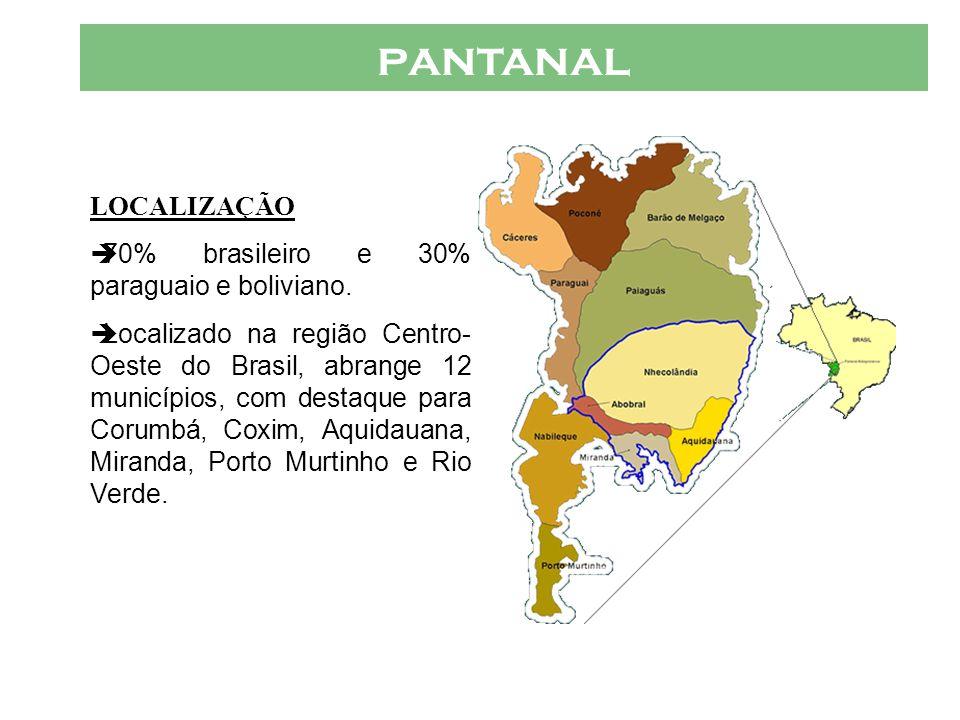 pantanal LOCALIZAÇÃO 70% brasileiro e 30% paraguaio e boliviano.