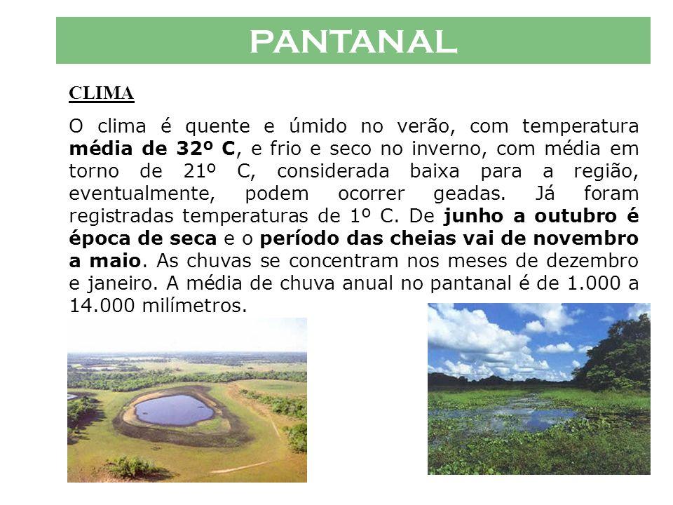 PANTANAL CLIMA.