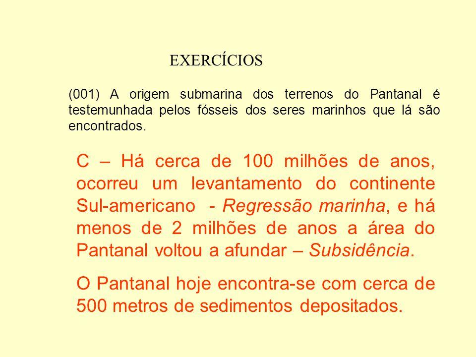 EXERCÍCIOS (001) A origem submarina dos terrenos do Pantanal é testemunhada pelos fósseis dos seres marinhos que lá são encontrados.