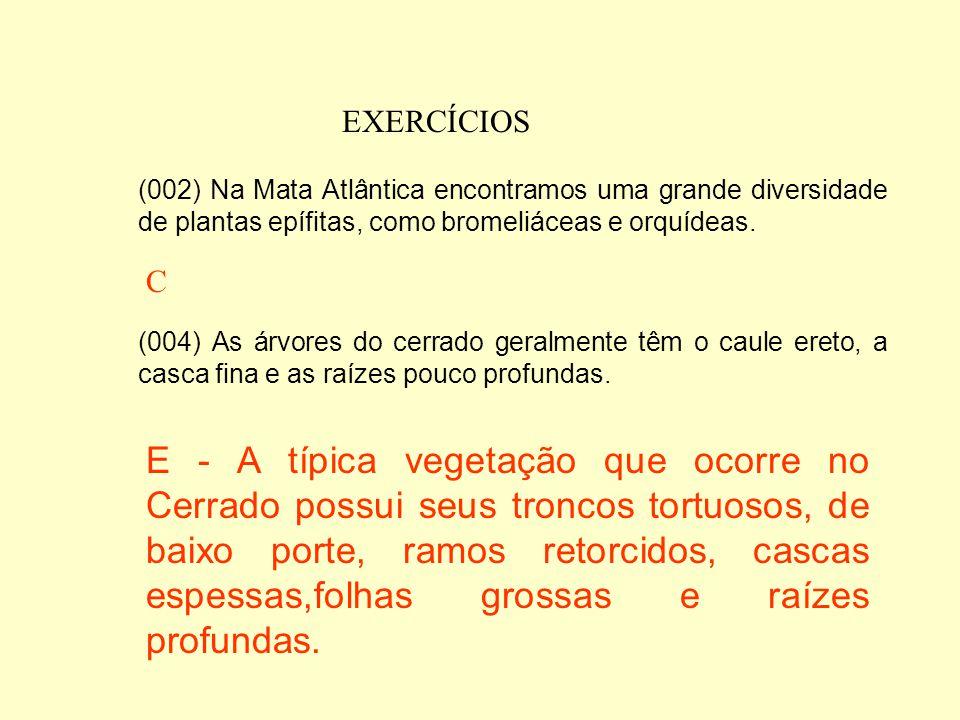 EXERCÍCIOS (002) Na Mata Atlântica encontramos uma grande diversidade de plantas epífitas, como bromeliáceas e orquídeas.