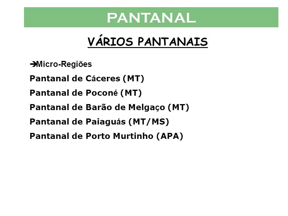 PANTANAL VÁRIOS PANTANAIS Micro-Regiões Pantanal de Cáceres (MT)