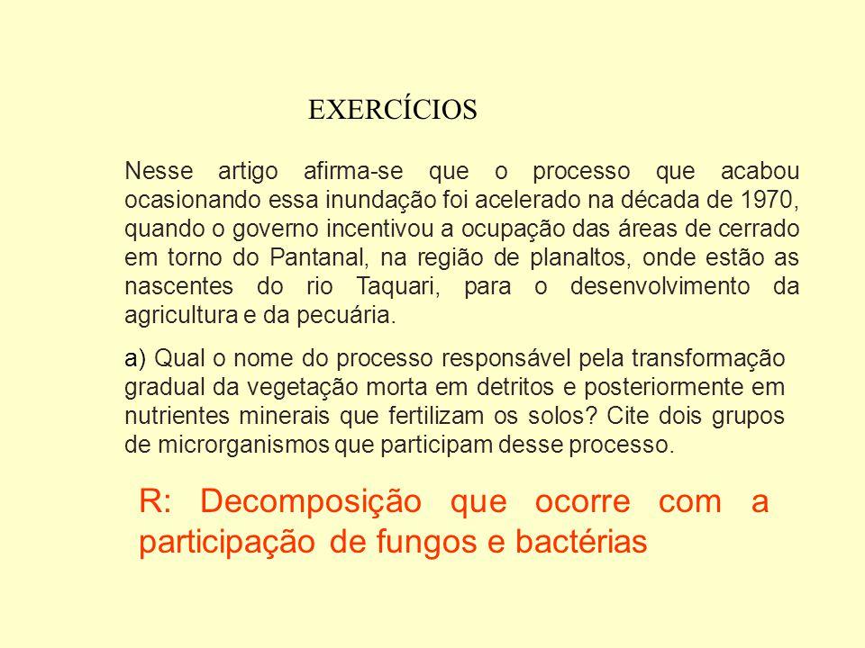 R: Decomposição que ocorre com a participação de fungos e bactérias