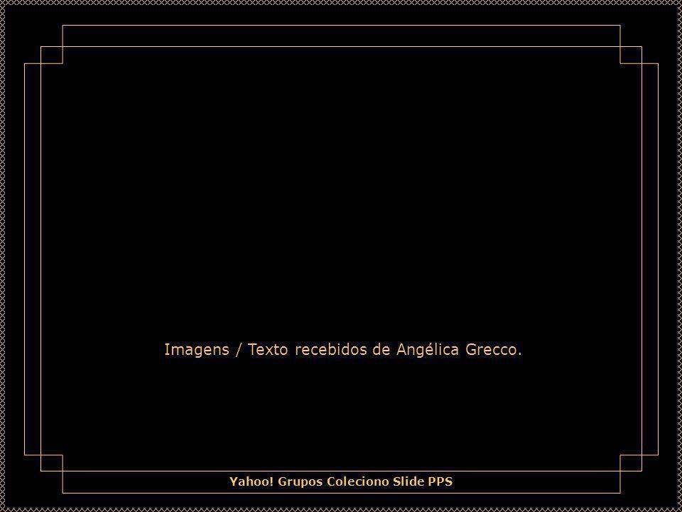 Imagens / Texto recebidos de Angélica Grecco.