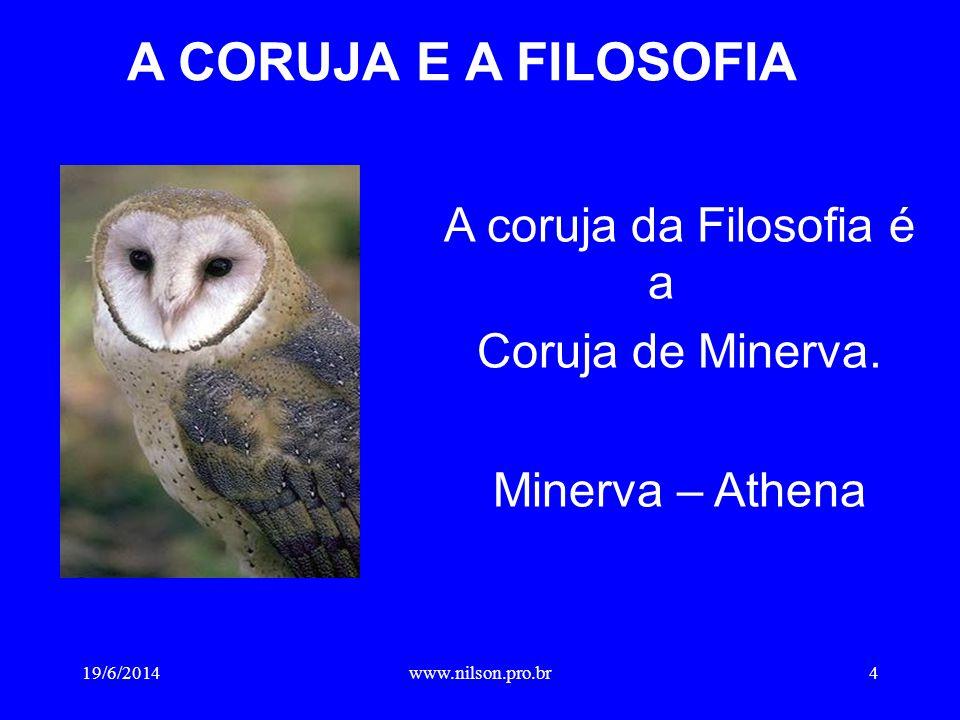 A coruja da Filosofia é a
