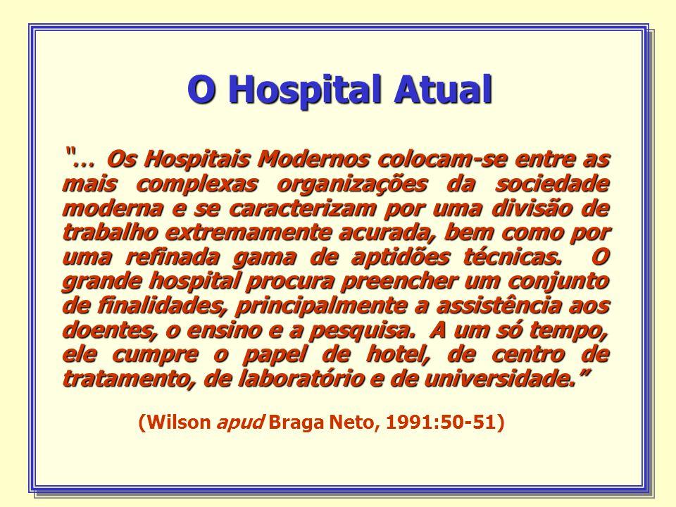 (Wilson apud Braga Neto, 1991:50-51)