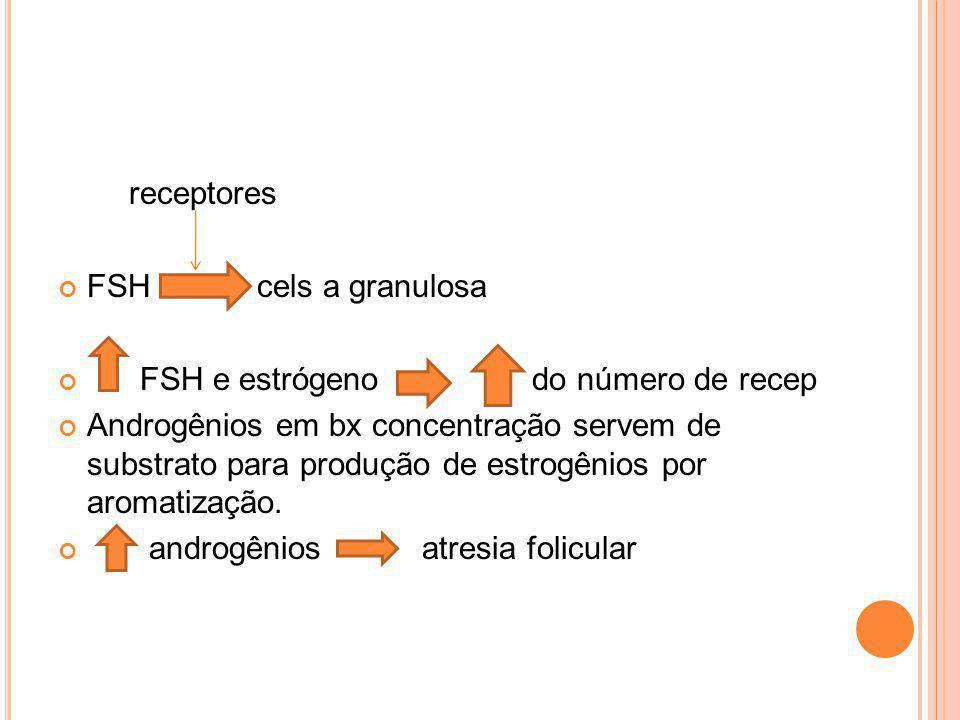 receptores FSH cels a granulosa. FSH e estrógeno do número de recep.