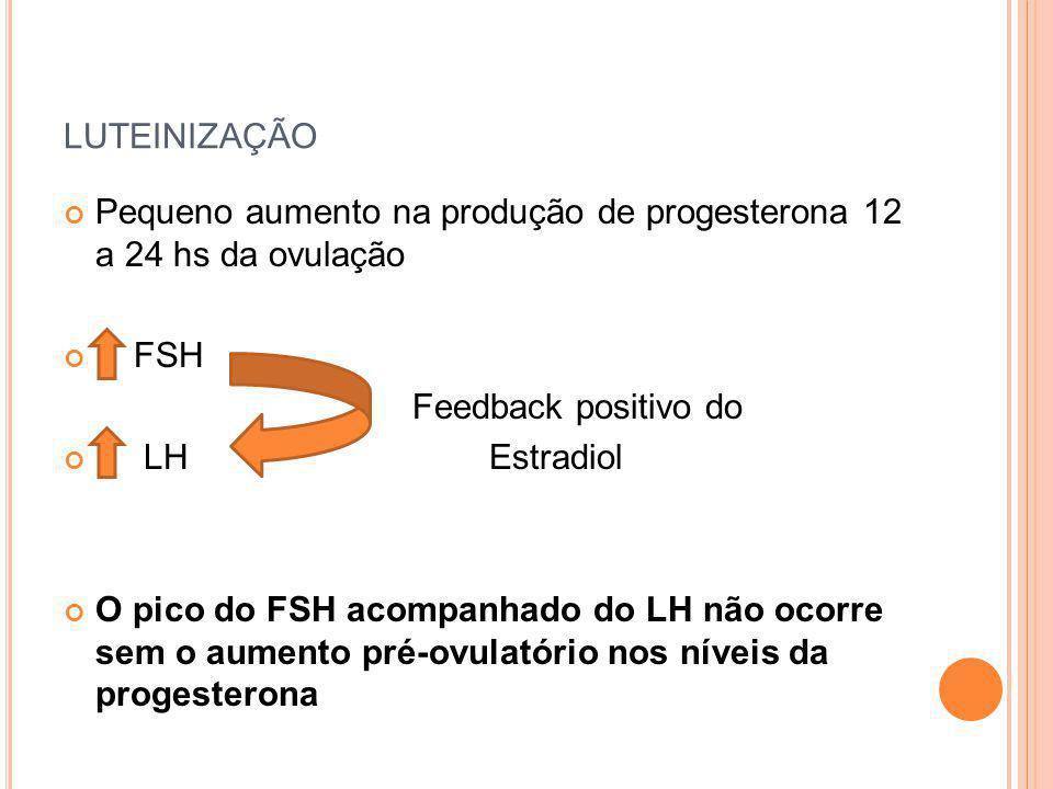 luteinização Pequeno aumento na produção de progesterona 12 a 24 hs da ovulação. FSH. Feedback positivo do.