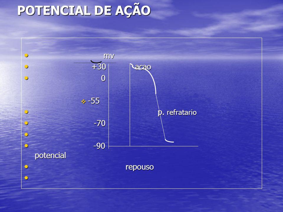 POTENCIAL DE AÇÃO mv +30 acao -55 p. refratario -70 -90 potencial