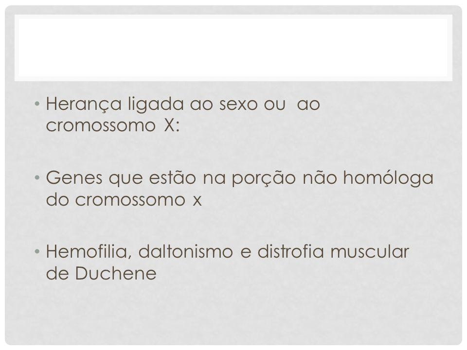 Herança ligada ao sexo ou ao cromossomo X: