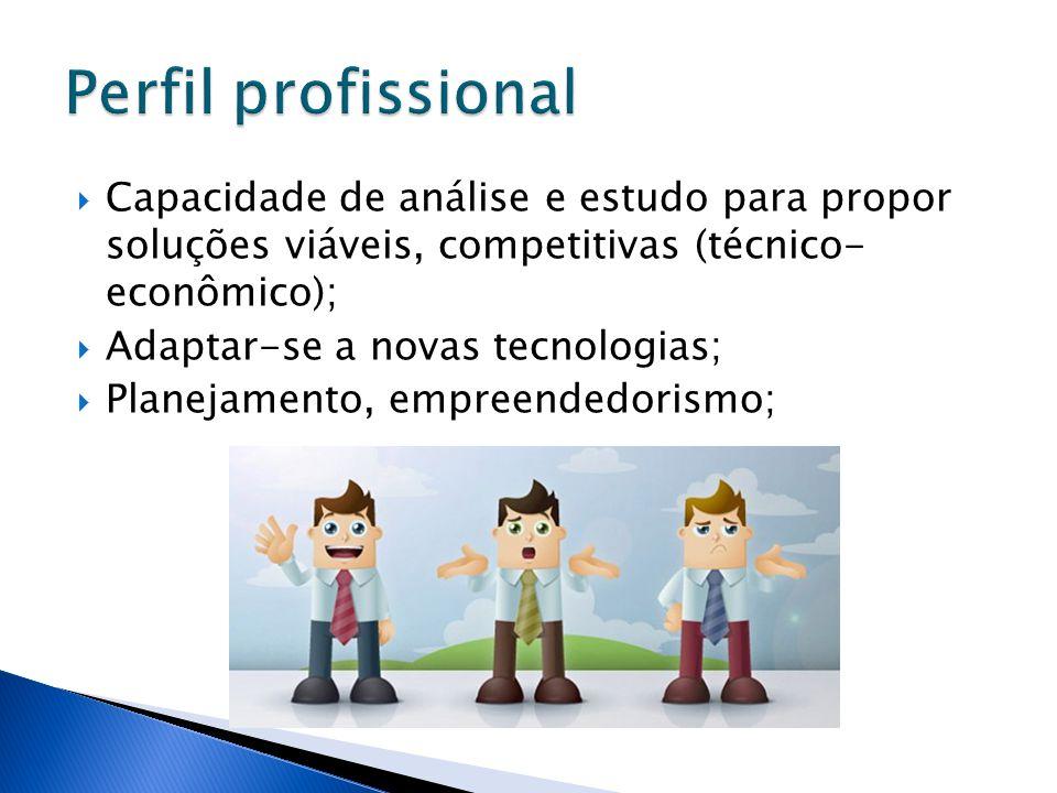 Perfil profissional Capacidade de análise e estudo para propor soluções viáveis, competitivas (técnico- econômico);