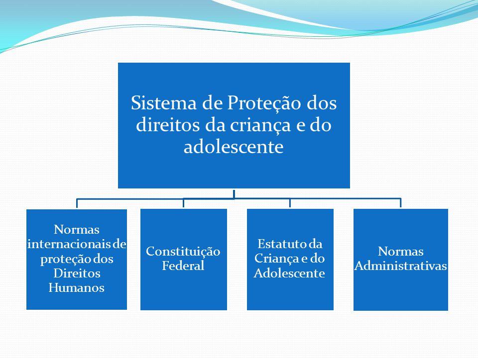 Sistema de Proteção dos direitos da criança e do adolescente